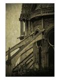 Notre Dame Detail I