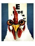 Cock Eye Doc