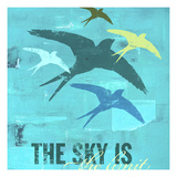 The Sky is the Limit 1