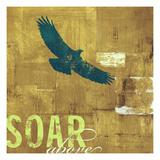 Soar Above 2