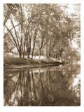 Mecan River 2