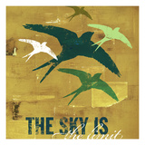 The Sky is the Limit 3