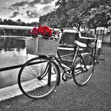 Romantic Roses I