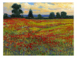 Red Field I