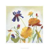 Chelsea Floral II