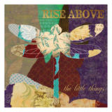 Rise Above Dragonfly