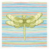 Summer Stripe dragonfly 3