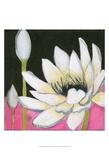 Bliss Lotus III