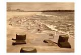 Bradley Beach Sea Gulls Sepia 2