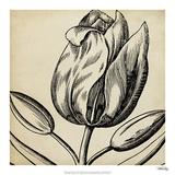Graphic Floral VI