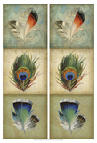 2-Up Feather Triptych I
