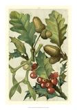 Fruits & Foliage II