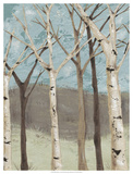 Blue Birches I