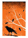 Ravens October Sky