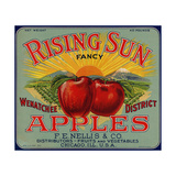 Warshaw Collection of Business Americana Food; Fruit Crate Labels  FE Nellis & Co
