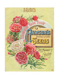 Seed Catalogues: WW Rawson and Co Rawson's Vegetable and Flower Seeds Boston  MA  1893