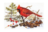 Holiday Christmas Cardinal, Beatrice Litzinger Collection Giclée