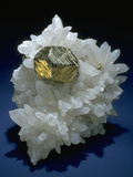 MineralCalendar: Pyrite on Quartz Crystals Huanzala  Peru