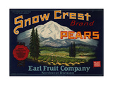 Warshaw Collection of Business Americana Food; Fruit Crate Labels  Earl Fruit Company