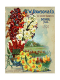 Seed Catalog Captions (2012): WW Rawson and Co  Boston  Massachusetts  1897