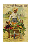 Seed Catalogues: The Perry Seed Store Syracuse  NY  1893