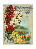 WW Rawson and Co