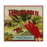 Fruit Crate Labels: Rhubarb; Packed and Shipped by Washington Berry Growers Association
