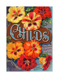 Seed Catalogues: John Lewis Childs  Rare Flowers  Vegetables  and Fruits Floral Park  NY  1897