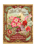 Seed Catalogues: Steele  Briggs Seed Co Ltd Complete Catalogue of Famous Seeds  Plants  and Bulbs
