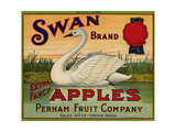 Fruit Crate Labels: Swan Brand Extra Fancy Apples; Perham Fruit Company Giclée
