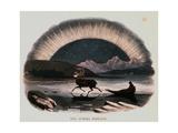 "Smimthsonian Libraries: Aurora Borealis from ""Thirty Plates Illustrative of Natural Phenomena"""
