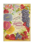 Seed Catalogues: Farmer Seed Co Farm and Garden Seeds  Spring 1906