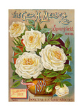Seed Catalogues: The Geo. H. Mellen Co. Condensed Catalogue of Special Offers Giclée