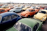 Imported Volkswagen Beetles on an American Pier in 1970s
