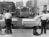 Policemen Watch as 'Freedom Riders' Arrive in Jackson  Mississippi  May 24  1961