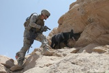 US Soldier and His Working Dog Search for a Weapons in Afghanistan  2010