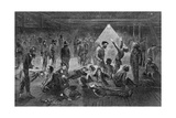 Steerage Passengers Suffering from 'Ship Fever ' from Liverpool to New York in 1869