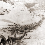 Long Ribbon of Miners Bound For the Klondike Gold Fields Climbing over the Chilcoot Pass  in 1898
