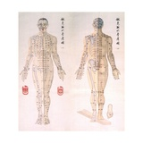 Chinese Chart of Acupuncture Points on a Male Body  1956