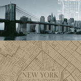 NYC Map I