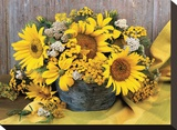 Sunflower Arrangement II