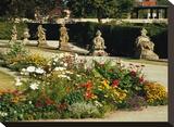 Somptuous Garden V