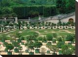 Somptuous Garden II