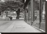 Place de Furstenberg Paris