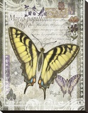 Butterfly Artifact II