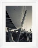 Jordan  Amman  Amman Suspension Bridge