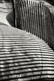 Dunes Fence VI