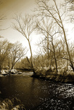 Winter on the Neuse River