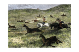 Argentine Natives Using the Bola to Hunt Guanacos  a Type of Llama