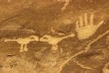 Anasazi/Ancient Puebloan Petroglyphs of the Parrot Clan Symbol  Mesa Verde National Park  Colorado